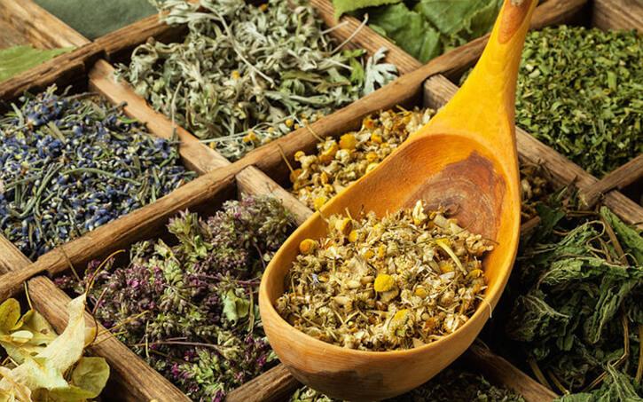 лечение гастрита сборы трав