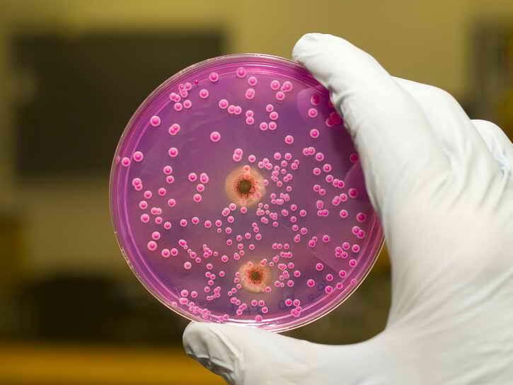 тест на грибок кандида